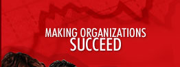 Making Organizations Succeed